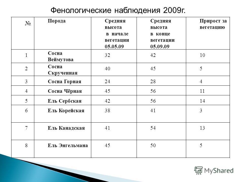 Фенологические наблюдения 2009 г. Порода Средняя высота в начале вегетации 05.05.09 Средняя высота в конце вегетации 05.09.09 Прирост за вегетацию 1 Сосна Веймутова 324210 2 Сосна Скрученная 40455 3Сосна Горная 24284 4Сосна Чёрная 455611 5Ель Сербска