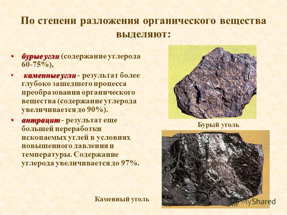 По степени разложения органического вещества выделяют: бурые углибурые угли (содержание углерода 60-75%), каменные угли каменные угли - результат более глубоко зашедшего процесса преобразования органического вещества (содержание углерода увеличиваетс