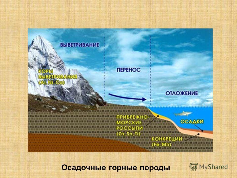 Осадочные горные породы
