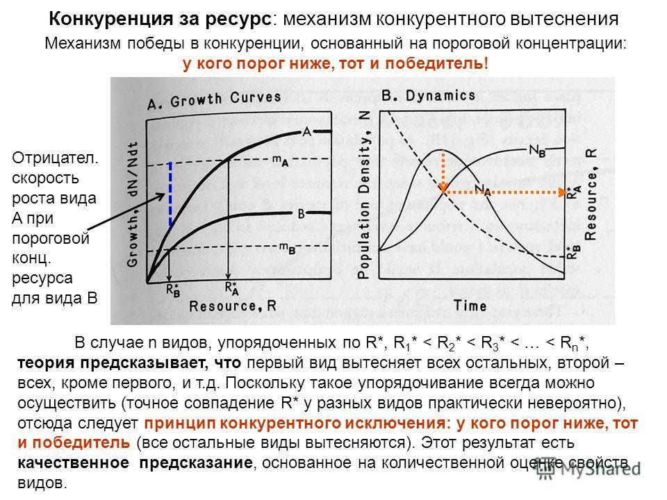 Механизм победы в конкуренции, основанный на пороговой концентрации: у кого порог ниже, тот и победитель! Конкуренция за ресурс: механизм конкурентного вытеснения В случае n видов, упорядоченных по R*, R 1 * < R 2 * < R 3 * < … < R n *, теория предск