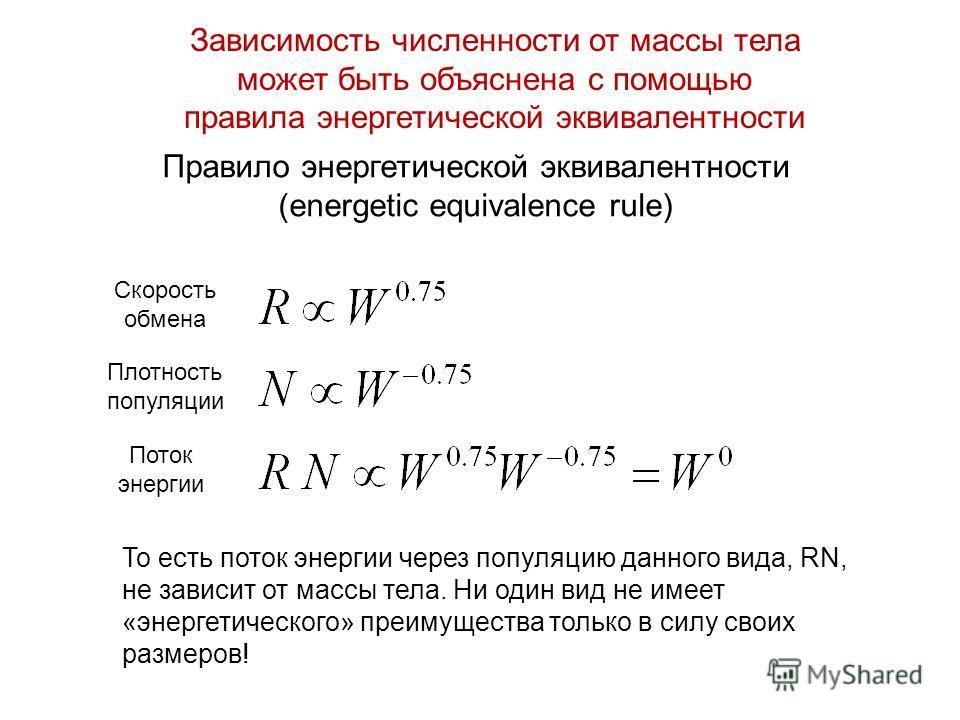 Правило энергетической эквивалентности (energetic equivalence rule) То есть поток энергии через популяцию данного вида, RN, не зависит от массы тела. Ни один вид не имеет «энергетического» преимущества только в силу своих размеров! Зависимость числен