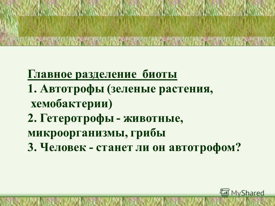 Главное разделение биоты 1. Автотрофы (зеленые растения, хемобактерии) 2. Гетеротрофы - животные, микроорганизмы, грибы 3. Человек - станет ли он автотрофом?
