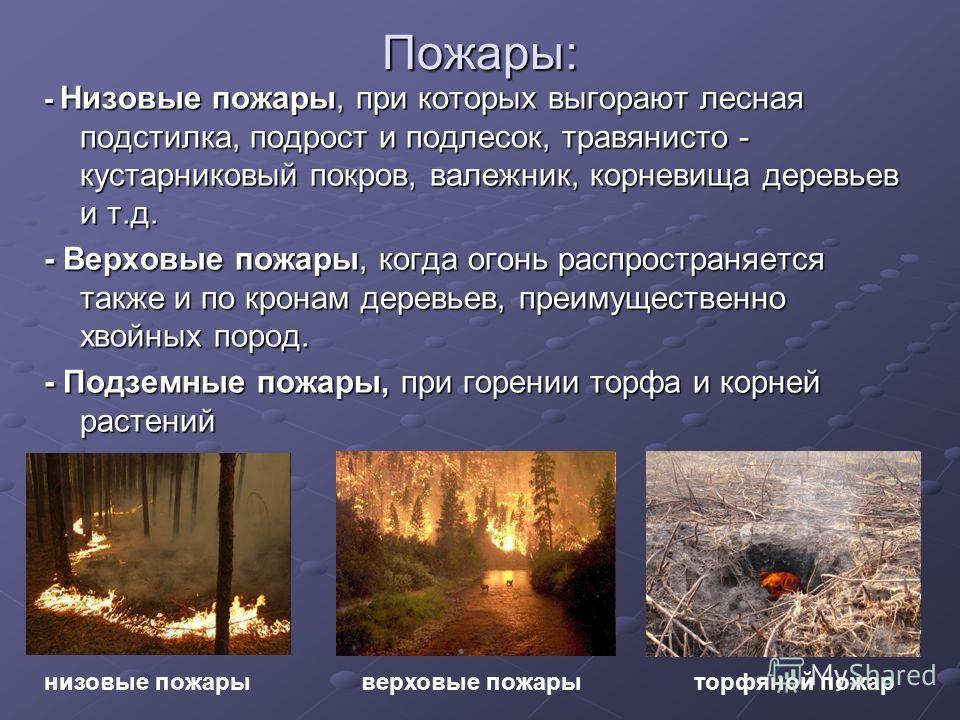 Пожары: - Низовые пожары, при которых выгорают лесная подстилка, подрост и подлесок, травянисто - кустарниковый покров, валежник, корневища деревьев и т.д. - Верховые пожары, когда огонь распространяется также и по кронам деревьев, преимущественно хв