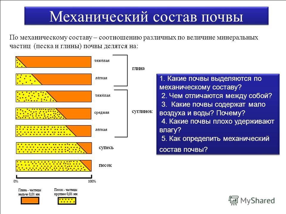 Механический состав почвы По механическому составу – соотношению различных по величине минеральных частиц (песка и глины) почвы делятся на: 1. Какие почвы выделяются по механическому составу? 2. Чем отличаются между собой? 3. Какие почвы содержат мал