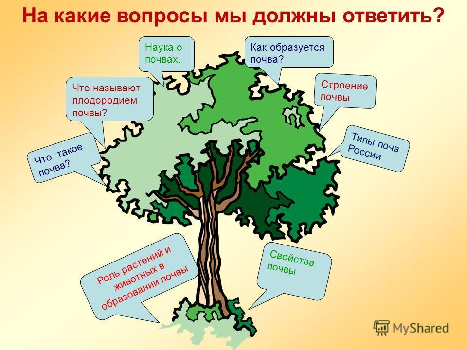 На какие вопросы мы должны ответить? Что такое почва? Что называют плодородием почвы? Наука о почвах. Как образуется почва? Роль растений и животных в образовании почвы Cвойства почвы Строение почвы Типы почв России