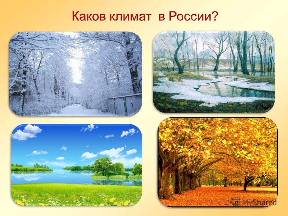 Каков климат в России?