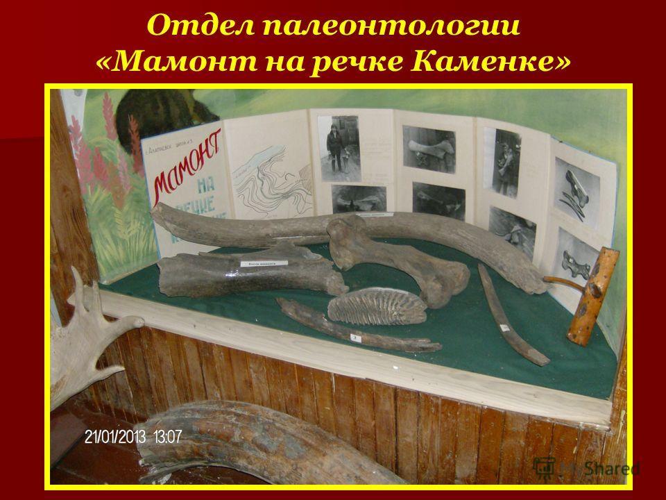Отдел палеонтологии «Мамонт на речке Каменке»