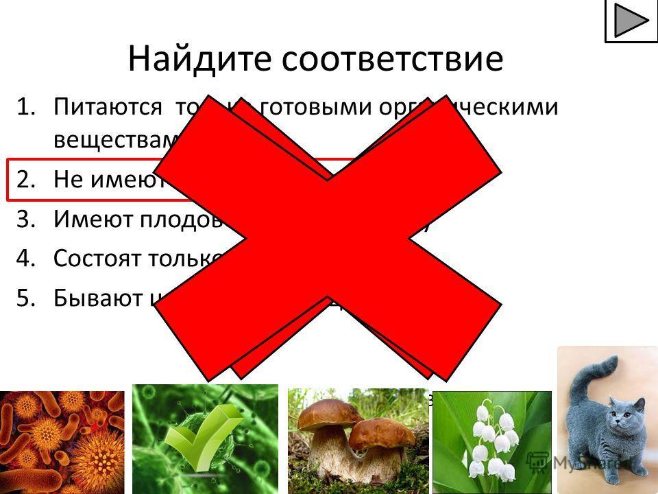 Найдите соответствие 1. Питаются только готовыми органическими веществами 2. Не имеют клеточного строения 3. Имеют плодовое тело, грибницу 4. Состоят только из 1 клетки 5. Бывают цветковые и нецветковые 3.