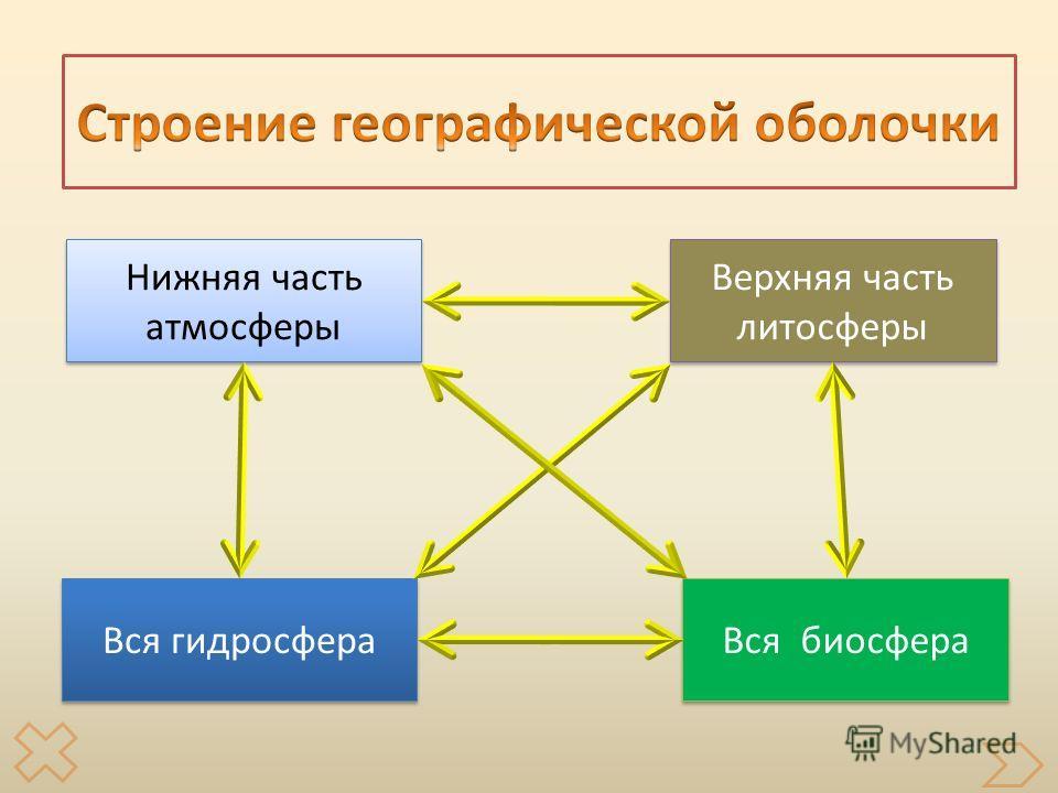 Вся биосфера Вся гидросфера Верхняя часть литосферы Верхняя часть литосферы Нижняя часть атмосферы Нижняя часть атмосферы