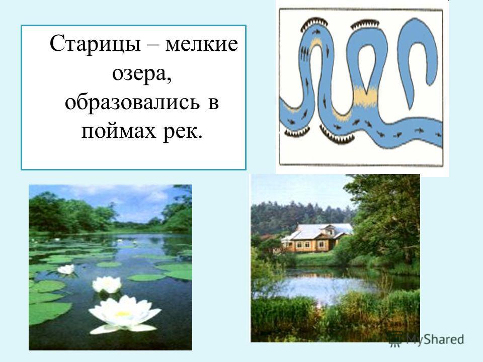 Старицы – мелкие озера, образовались в поймах рек.