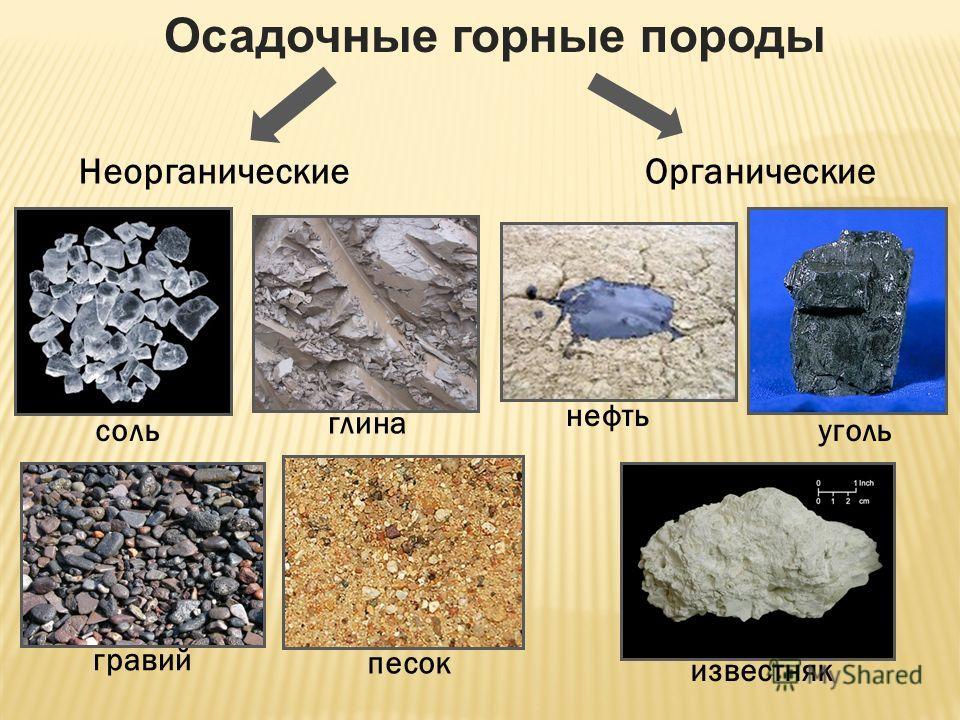 Осадочные горные породы Органические Неорганические известняк уголь нефть песок соль глина гравий