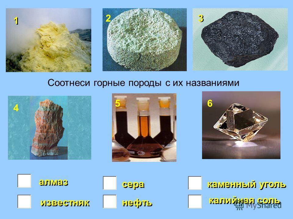 алмаз калийная соль нефть каменный уголь сера известняк 1 1 2 3 3 4 56 Соотнеси горные породы с их названиями