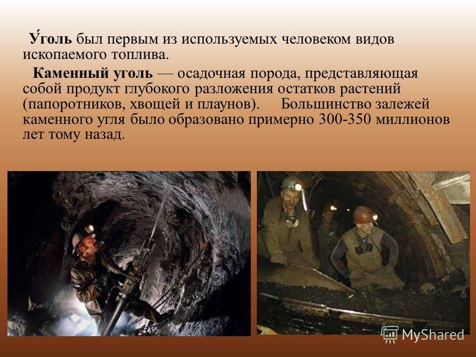 У́голь был первым из используемых человеком видов ископаемого топлива. Каменный уголь осадочная порода, представляющая собой продукт глубокого разложения остатков растений (папоротников, хвощей и плаунов). Большинство залежей каменного угля было обра
