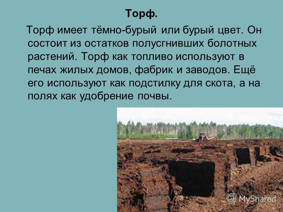 Горючие полезные ископаемые. Торф. Каменный уголь. Природный газ. Нефть.