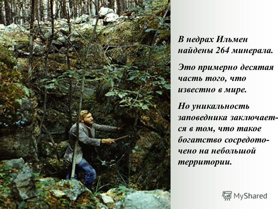 В недрах Ильмен найдены 264 минерала. Это примерно десятая часть того, что известно в мире. Но уникальность заповедника заключает- ся в том, что такое богатство сосредото- чено на небольшой территории.