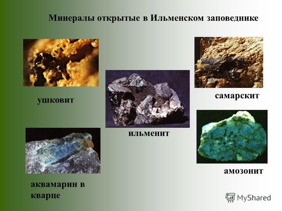 амозонит ильменит самарскит ушковит аквамарин в кварце Минералы открытые в Ильменском заповеднике