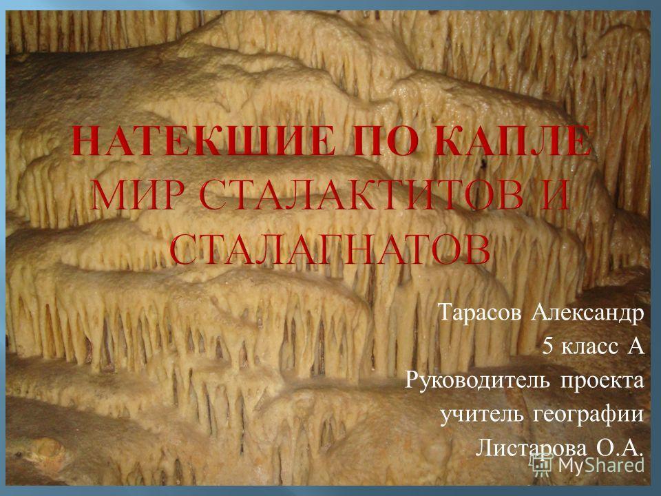 Тарасов Александр 5 класс А Руководитель проекта учитель географии Листарова О. А.