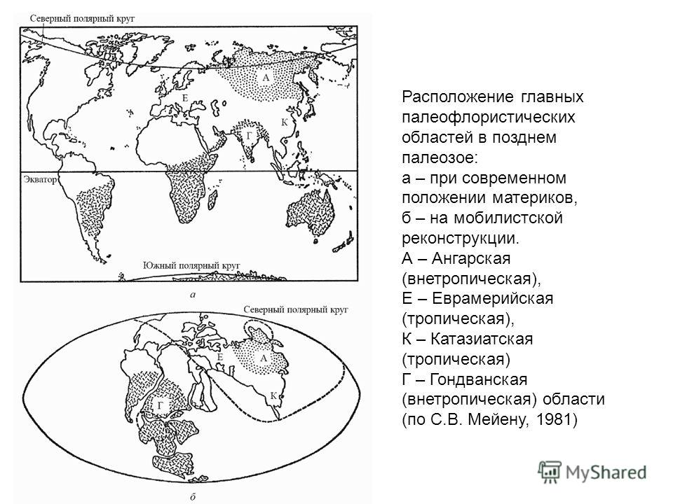 Расположение главных палеофлористических областей в позднем палеозое: а – при современном положении материков, б – на мобилистской реконструкции. А – Ангарская (внетропическая), Е – Еврамерийская (тропическая), К – Катазиатская (тропическая) Г – Гонд