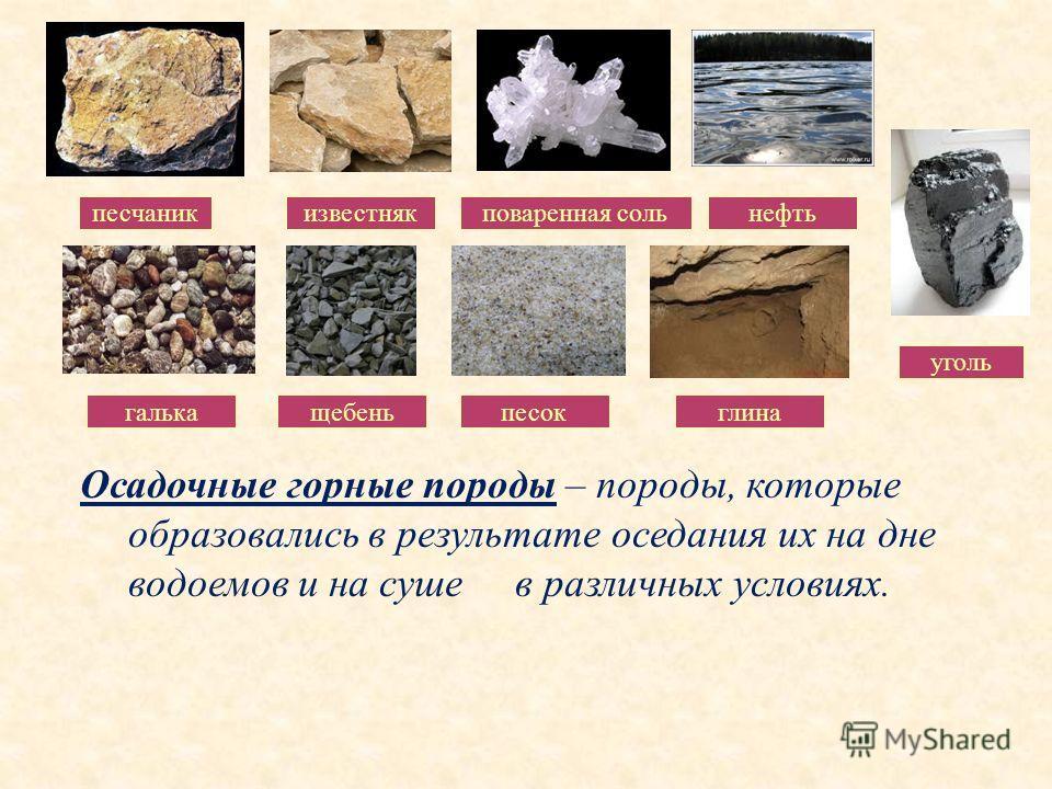 Осадочные горные породы – породы, которые образовались в результате оседания их на дне водоемов и на суше в различных условиях. песчаникизвестняк поваренная соль нефть галькащебеньпесокглина уголь