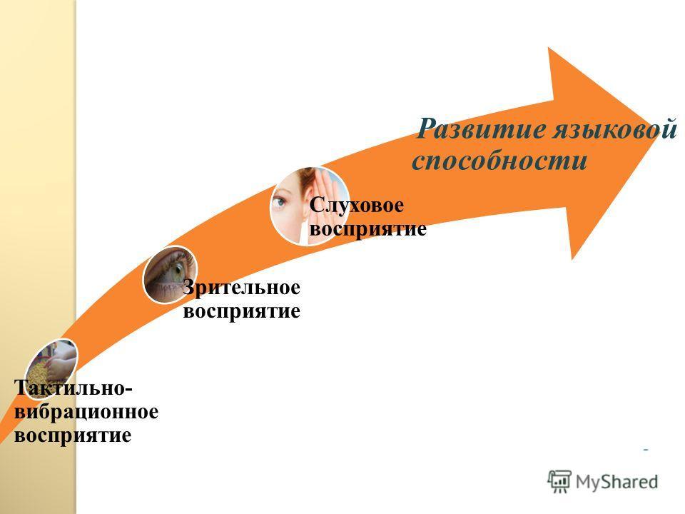 Тактильно- вибрационное восприятие Зрительное восприятие Слуховое восприятие Развитие языковой способности