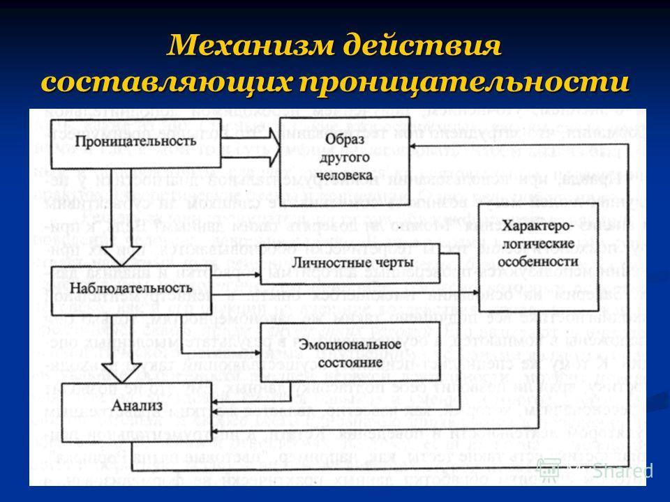 Механизм действия составляющих проницательности