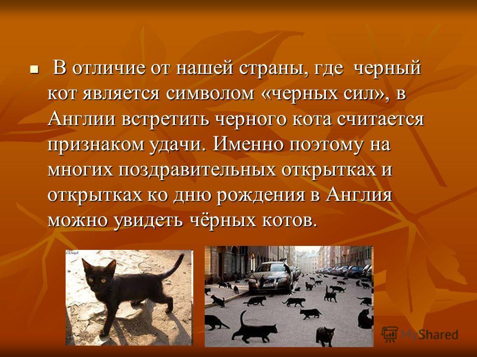 В отличие от нашей страны, где черный кот является символом «черных сил», в Англии встретить черного кота считается признаком удачи. Именно поэтому на многих поздравительных открытках и открытках ко дню рождения в Англия можно увидеть чёрных котов. В