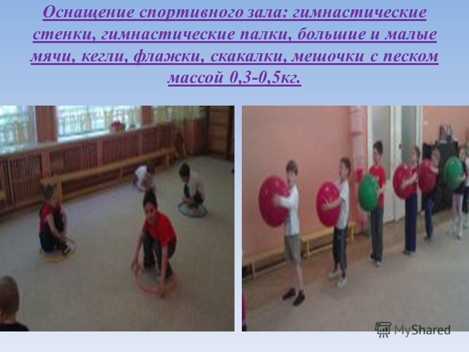 Оснащение спортивного зала : гимнастические стенки, гимнастические палки, большие и малые мячи, кегли, флажки, скакалки, мешочки с песком массой 0,3-0,5 кг.