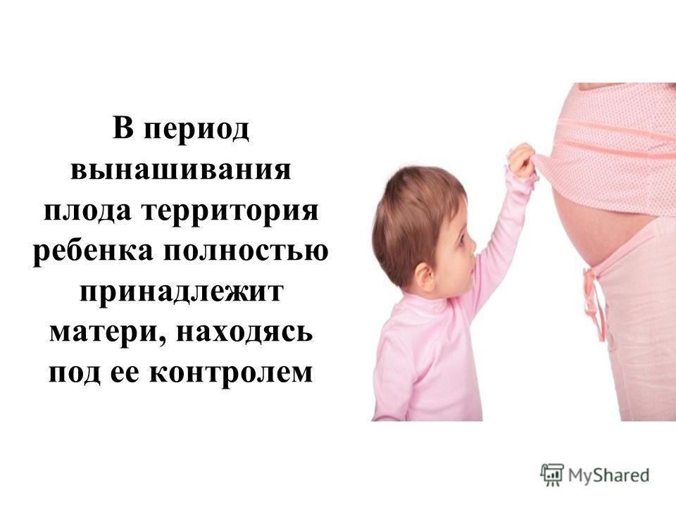 В период вынашивания плода территория ребенка полностью принадлежит матери, находясь под ее контролем