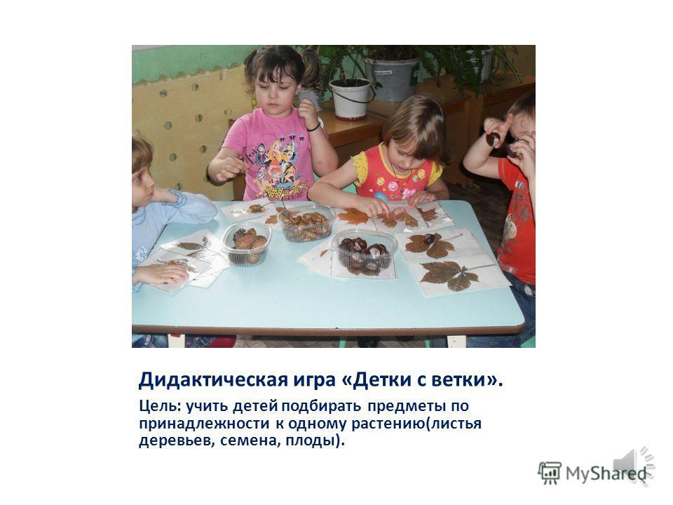 Коллекция «Подарки Осени». Цель: продолжать учить различать овощи и фрукты.