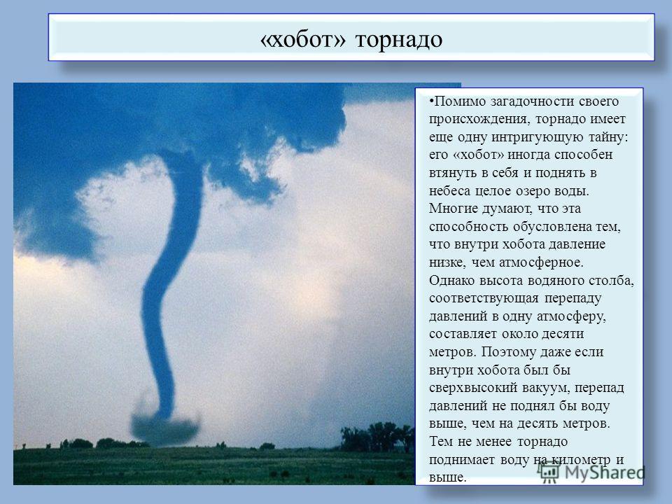 «хобот» торнадо Помимо загадочности своего происхождения, торнадо имеет еще одну интригующую тайну: его «хобот» иногда способен втянуть в себя и поднять в небеса целое озеро воды. Многие думают, что эта способность обусловлена тем, что внутри хобота