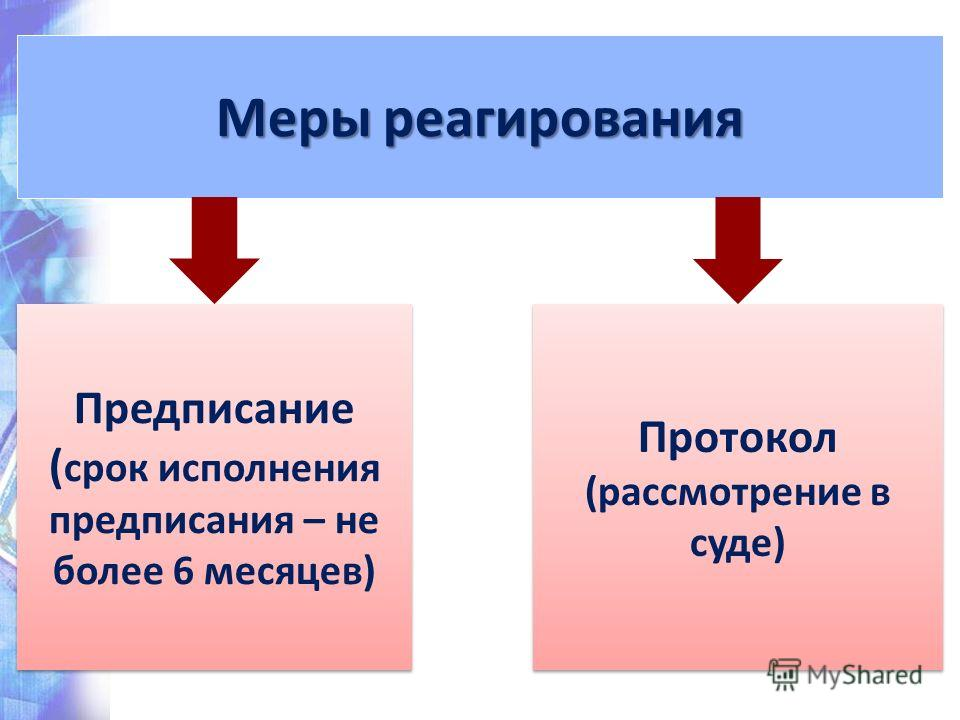 Меры реагирования Предписание ( срок исполнения предписания – не более 6 месяцев) Протокол (рассмотрение в суде)