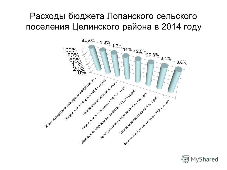 Расходы бюджета Лопанского сельского поселения Целинского района в 2014 году 52,9 44,5% 1,3% 1,7% 11% 12,5% 27,8% 0,4%