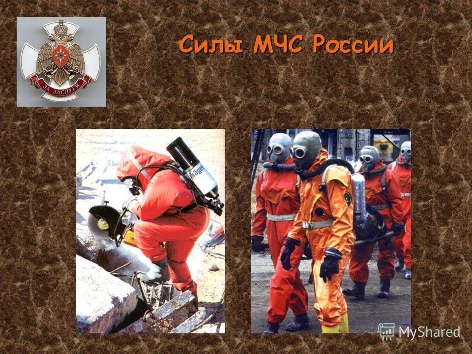 Силы МЧС России
