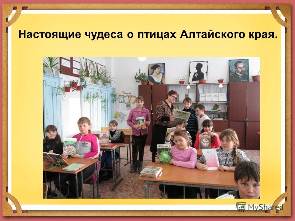 Настоящие чудеса о птицах Алтайского края.