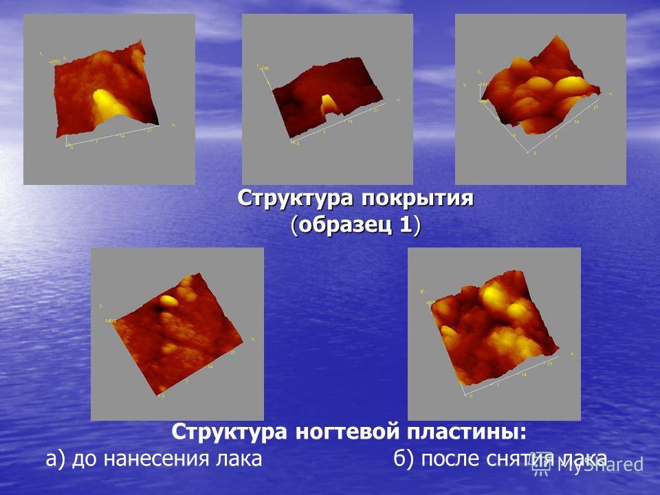 Структура ногтевой пластины: а) до нанесения лака б) после снятия лака Структура покрытия (образец 1)