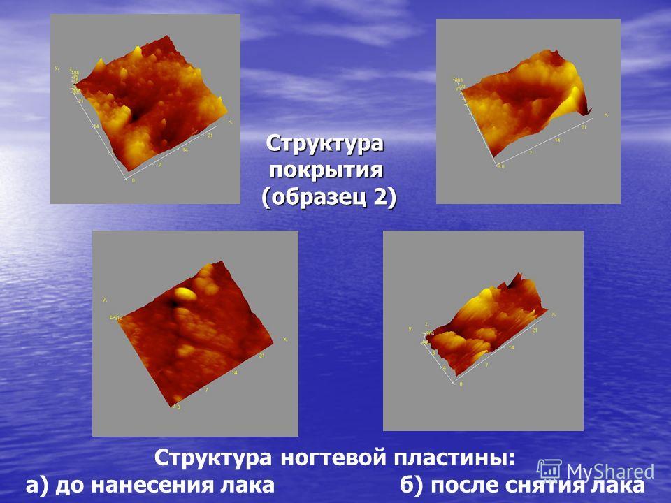 Структура ногтевой пластины: а) до нанесения лака б) после снятия лака Структурапокрытия (образец 2)