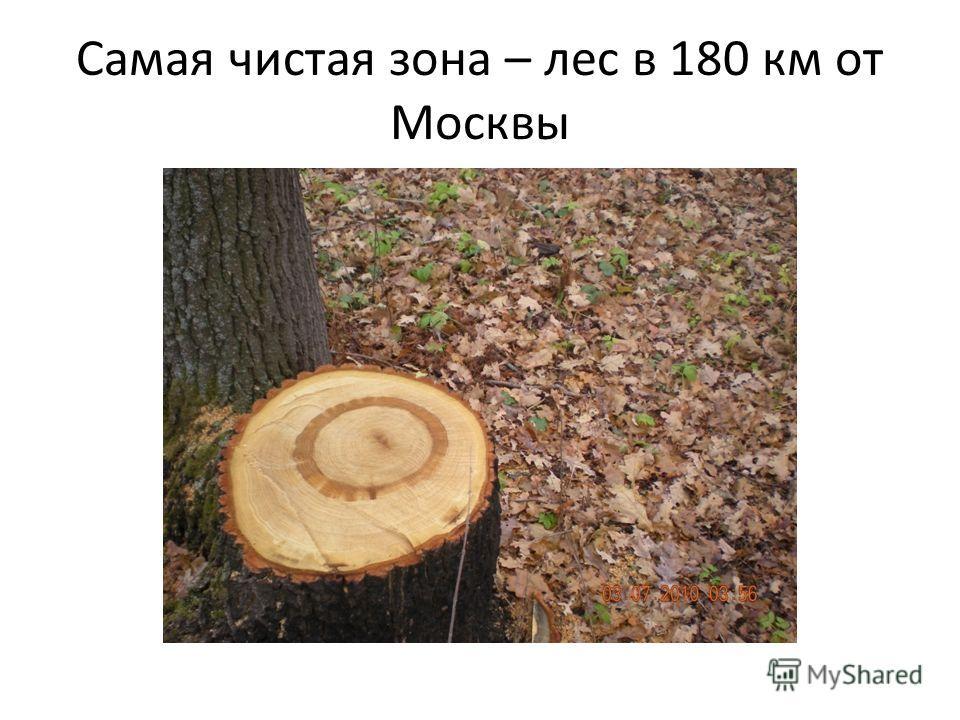 Самая чистая зона – лес в 180 км от Москвы