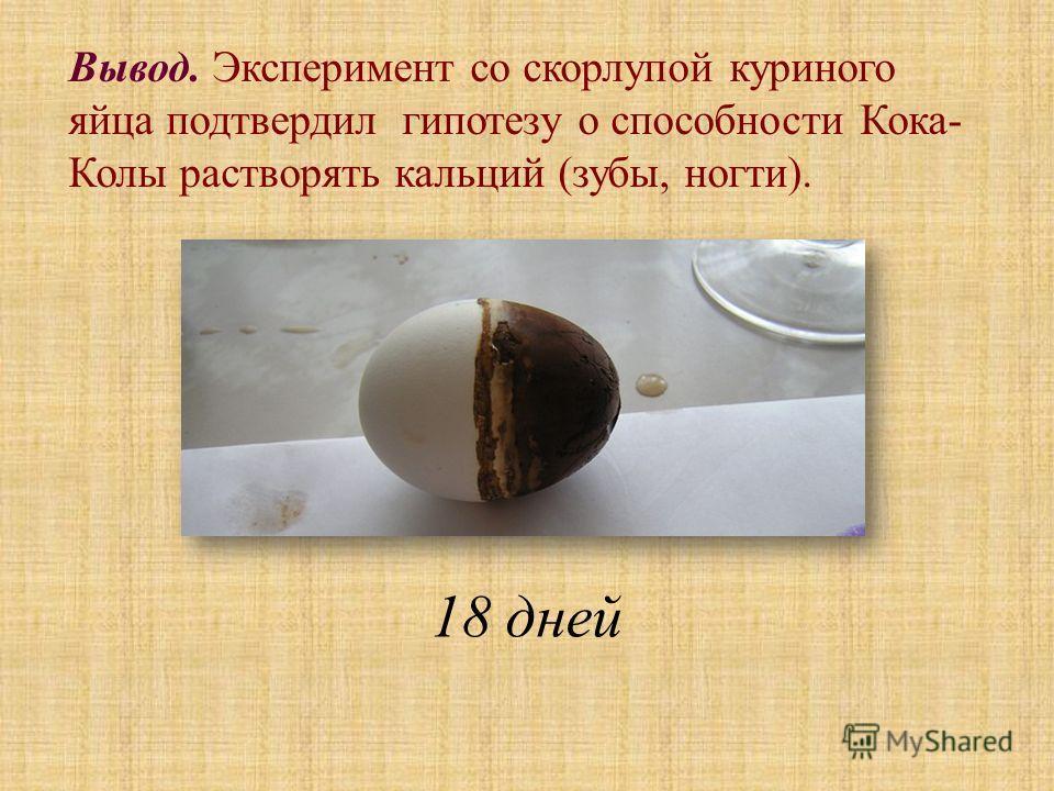 Вывод. Эксперимент со скорлупой куриного яйца подтвердил гипотезу о способности Кока- Колы растворять кальций (зубы, ногти). 18 дней