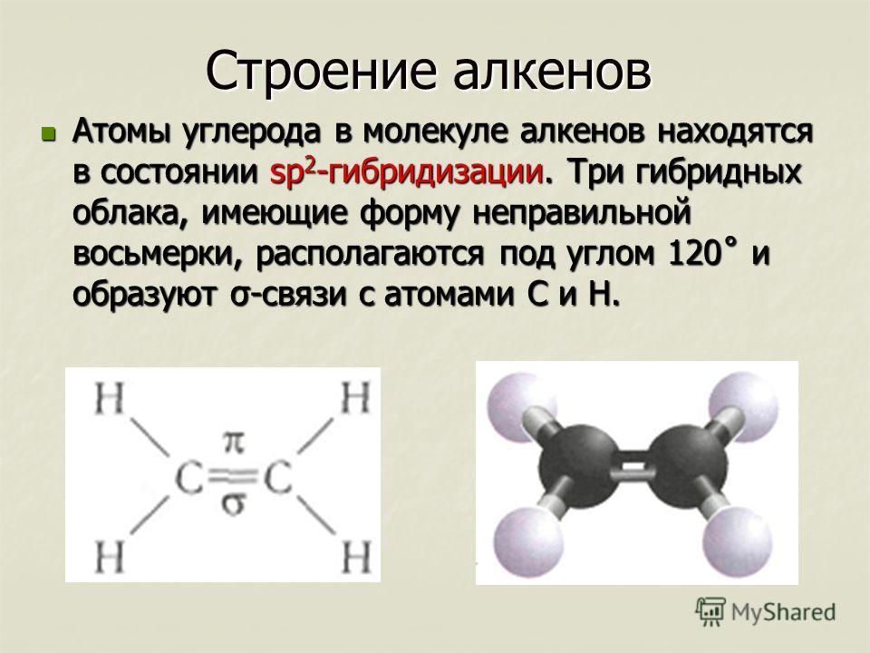 Строение алкенов Атомы углерода в молекуле алкенов находятся в состоянии sp 2 -гибридизации. Три гибридных облака, имеющие форму неправильной восьмерки, располагаются под углом 120˚ и образуют σ-связи с атомами С и Н. Атомы углерода в молекуле алкено