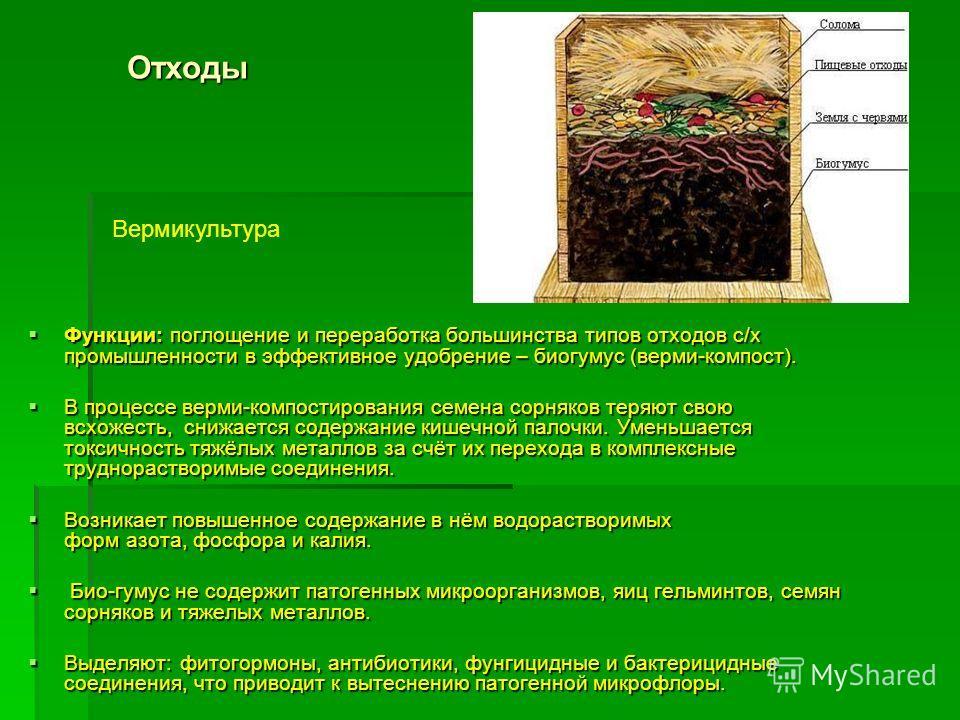 Функции: поглощение и переработка большинства типов отходов с/х промышленности в эффективное удобрение – биогумус (верми-компост). Функции: поглощение и переработка большинства типов отходов с/х промышленности в эффективное удобрение – биогумус (верм