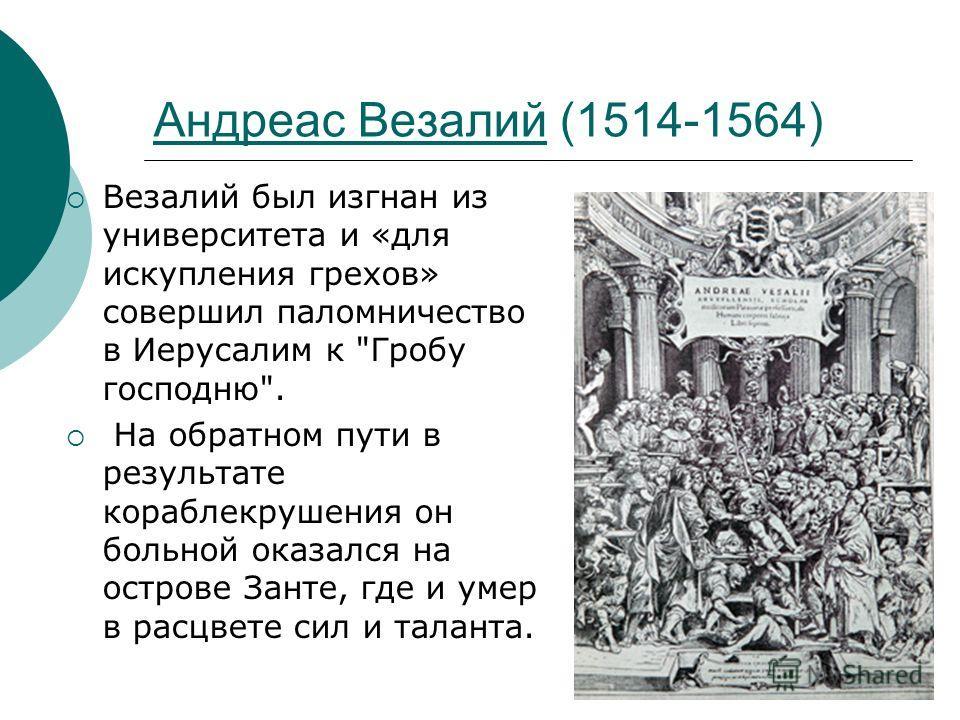 Андреас Везалий (1514-1564) Везалий был изгнан из университета и «для искупления грехов» совершил паломничество в Иерусалим к