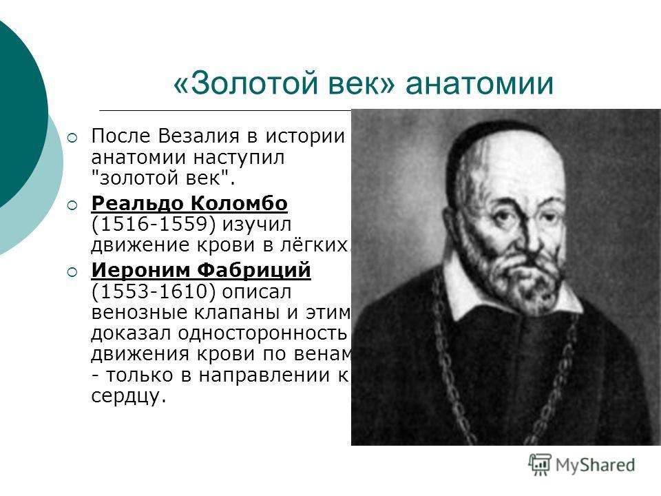 «Золотой век» анатомии После Везалия в истории анатомии наступил