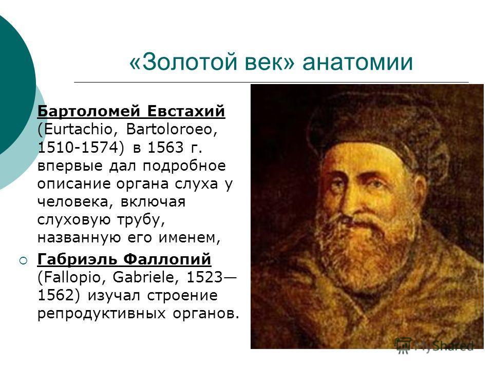 Бартоломей Евстахий (Eurtachio, Bartoloroeo, 1510-1574) в 1563 г. впервые дал подробное описание органа слуха у человека, включая слуховую трубу, названную его именем, Габриэль Фаллопий (Fallopio, Gabriele, 1523 1562) изучал строение репродуктивных о