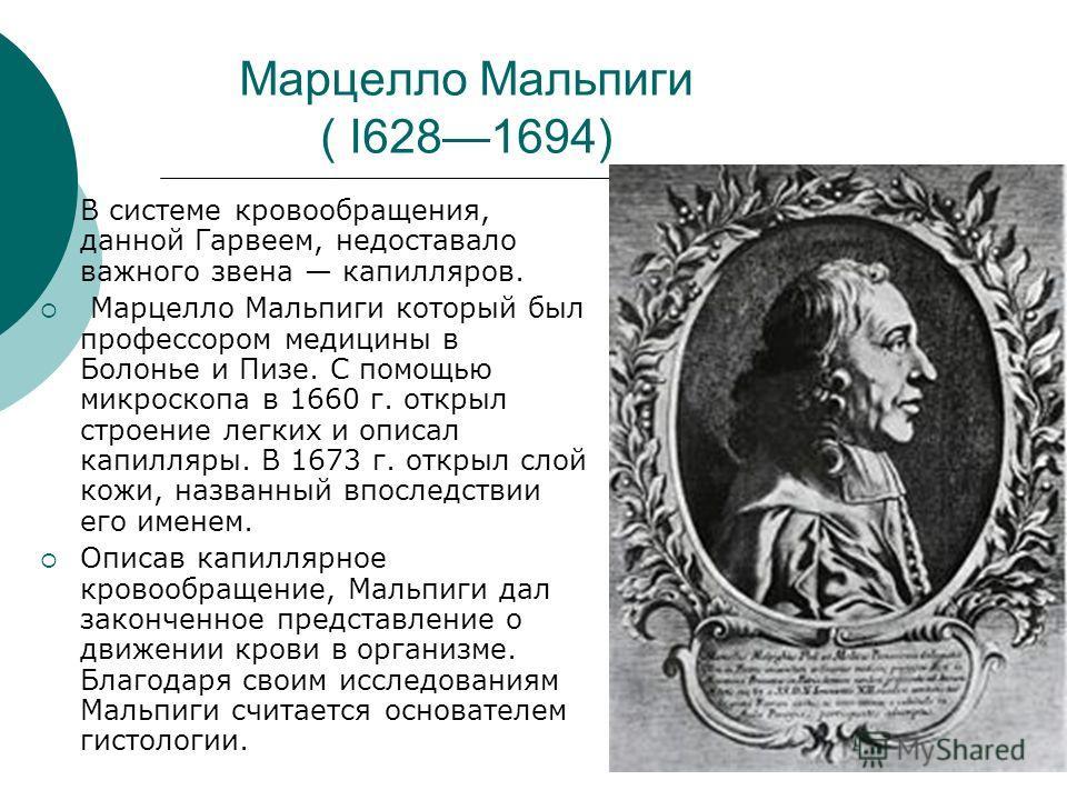 Марцелло Мальпиги ( I6281694) В системе кровообращения, данной Гарвеем, недоставало важного звена капилляров. Марцелло Мальпиги который был профессором медицины в Болонье и Пизе. С помощью микроскопа в 1660 г. открыл строение легких и описал капилляр