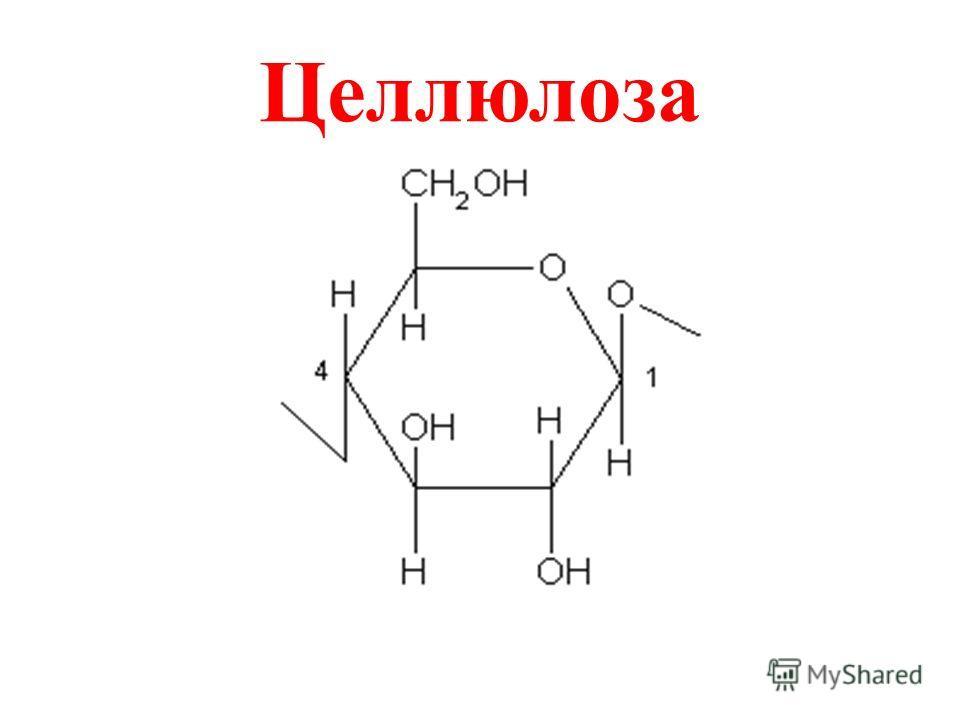Всегда ли для горения необходимо простое вещество «кислород»?
