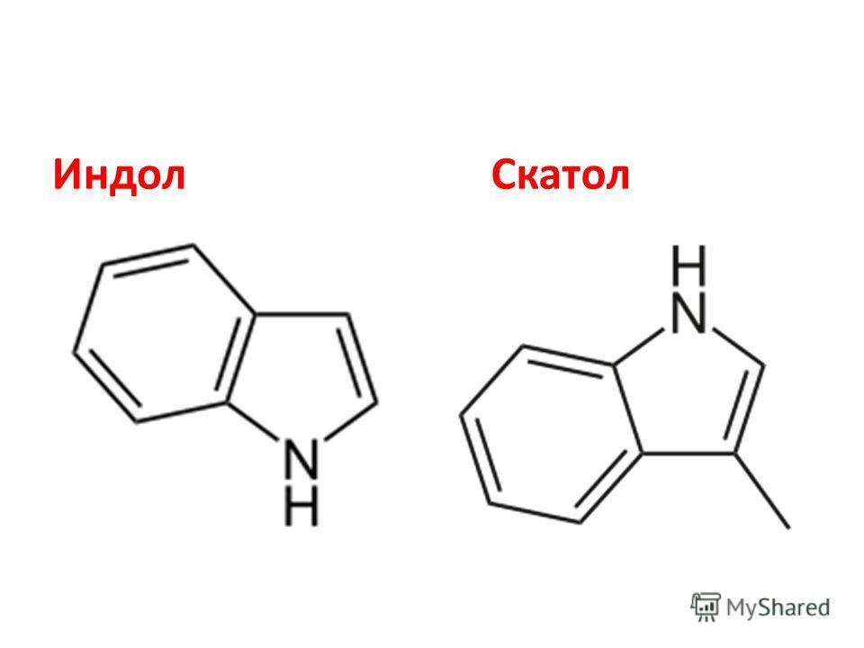 Азотсодержащие вещества метиламин (746), изопропиламин (581), пирролидин (0,199), индол (0,068), скатол (0,042), 2,2-дипиридил (2,68), н- метилпиррол (3,22), метилпиперазин (3,73), ацетонитрил (27,4), метакрилонитрил (2,62);