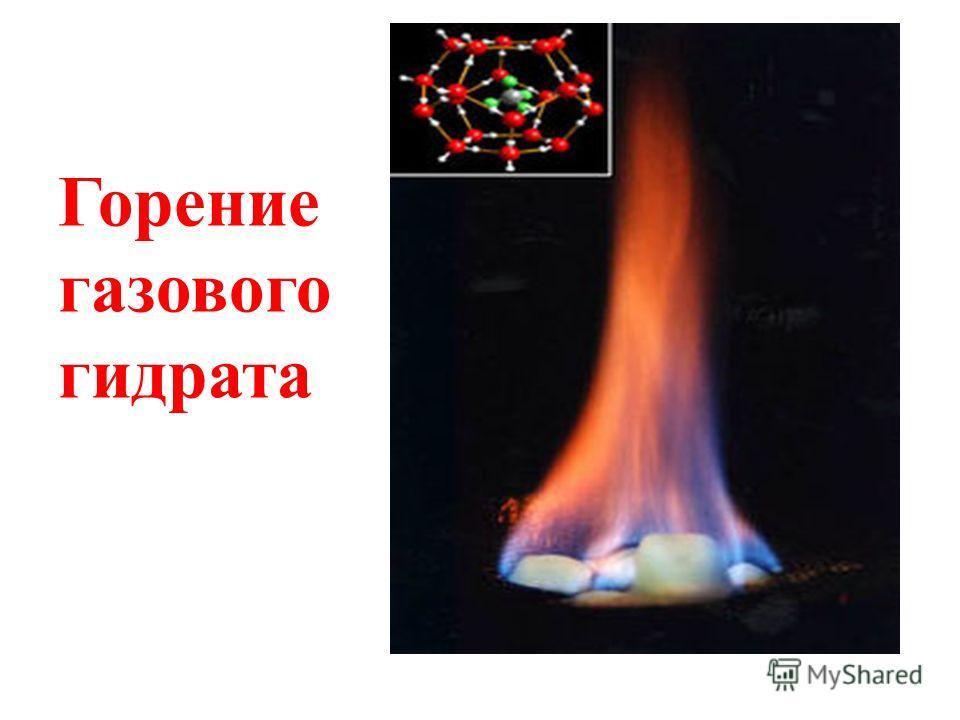 Первые описания газовых гидратов были приведены Г. Дэви в 1810 году (гидрат хлора). В 1823 г. Фарадей приближённо определил состав гидрата хлора, в 1829 г. Левит обнаружил гидрат брома, а в 1840 г. Вёлер получил гидрат H 2 S. К 1888 году П. Виллар по