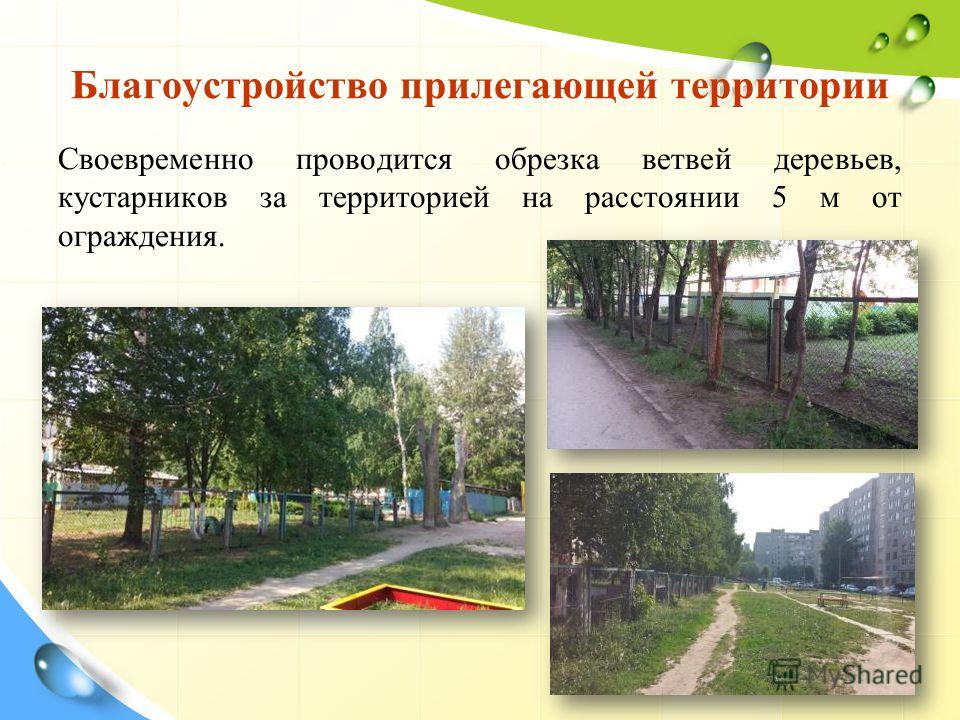 Благоустройство прилегающей территории Своевременно проводится обрезка ветвей деревьев, кустарников за территорией на расстоянии 5 м от ограждения.
