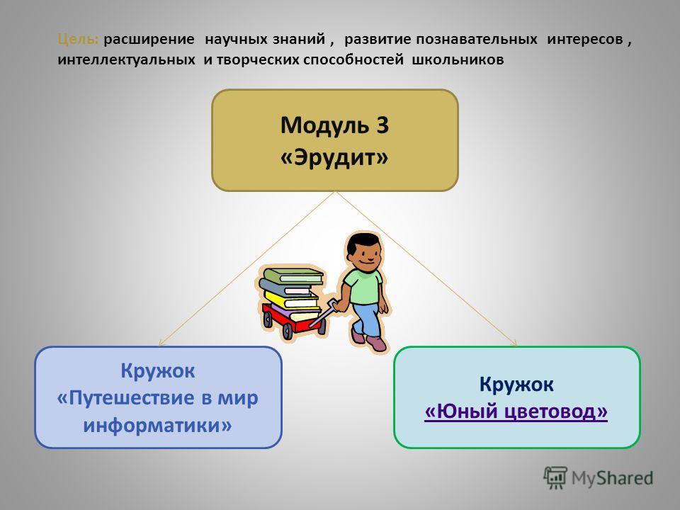 Модуль 3 «Эрудит» Кружок «Юный цветовод» Кружок «Путешествие в мир информатики» Цель: расширение научных знаний, развитие познавательных интересов, интеллектуальных и творческих способностей школьников