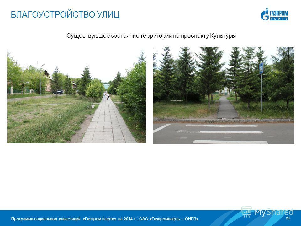 28 Программа социальных инвестиций «Газпром нефти» на 2014 г.: ОАО «Газпромнефть – ОНПЗ» Существующее состояние территории по проспекту Культуры БЛАГОУСТРОЙСТВО УЛИЦ